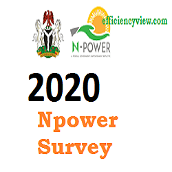 Npower Transition GEEP Loan/Field Data Agent for Beneficiaries 2020/2021