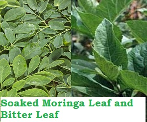 How to cure Infection when Soaked Moringa Leaf and Bitter Leaf