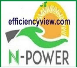 Npower Transition to Government Entrepreneurship Scheme
