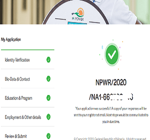 How to fill 2020 Npower Recruitment Registration Form successfully
