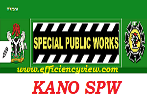 Kano State 774000 Special Public Work Recruitment 2020/2021