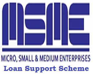 Micro Small and Medium Enterprises (MSMEs) Loan Support Scheme Application Form 2020 - 2023