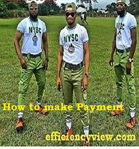 How to make Payment on NYSC Portal through Remita Link Portal