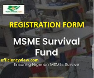How to Register for FG Survival Fund MSME Grants without CAC Certificate/TIN Number