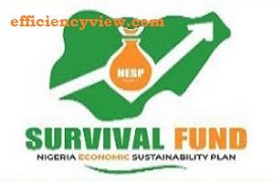 MSMEs Survival Fund Scheme 2020/2021 - www.survivalfund.ng