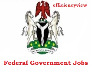 Federal Government of Nigeria Recruitment for Programme Coordinator under FMHADMSD 2020/2021 apply here