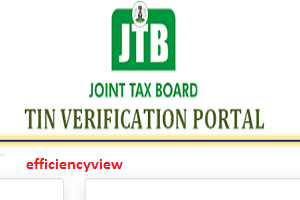 Individual Taxpayer TIN Registration Verification FIRS Portal – apply here