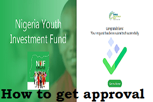 How to get approval for Nigeria Youth Investment Fund NYIF Loan Application Form