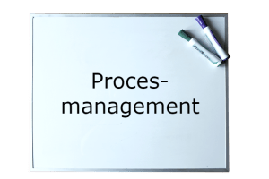 Procesmanagement, HBO Leergang Proces- en kwaliteitsmanagement