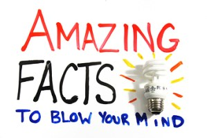 Amazing Facts That Will Surprise