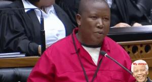 South African MP Julius Malema accuses President Jacob Zuma and his son Edward Zuma for xenophobic attacks (Must Watch Video)