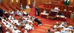, Nigerian Senate approves life sentence for rape, underage sex, Effiezy - Top Nigerian News & Entertainment Website
