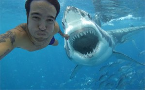Selfies have killed more people this year than sharks