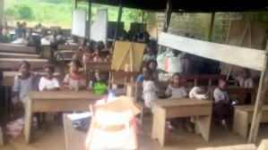 FEATURE: Inside Ogun primary school where pupils learn in 'poultry sheds'