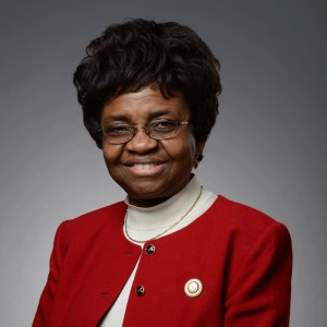 Youth group hails President Buhari for the appointment of Prof. Moji Christianah Adeyeye as NAFDAC DG