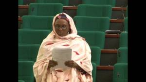 """Nigerians Eat Maggi So Much, That's Why We Are So Impatient And Edgy"" – Rep Member, Hon. Aishatu Dukku (Video)"