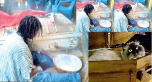Ghanaian Boy Turns Into Cat During Rituals After Spending Three Days In Coffin (Video)
