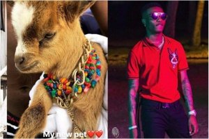 Seems Wizkid is getting another pet; This time a monkey (Photos)