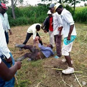 WTF: Man caught sleeping with a cow (Photo)