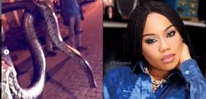 Toyin Lawani Cries Out After The Third Huge Python Was Killed In Her Banana Island Neighbourhood (Video)