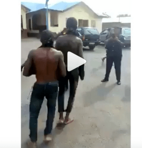 , See as Nigerian Police make two thieves dance with their stolen goats (Video), Effiezy - Top Nigerian News & Entertainment Website