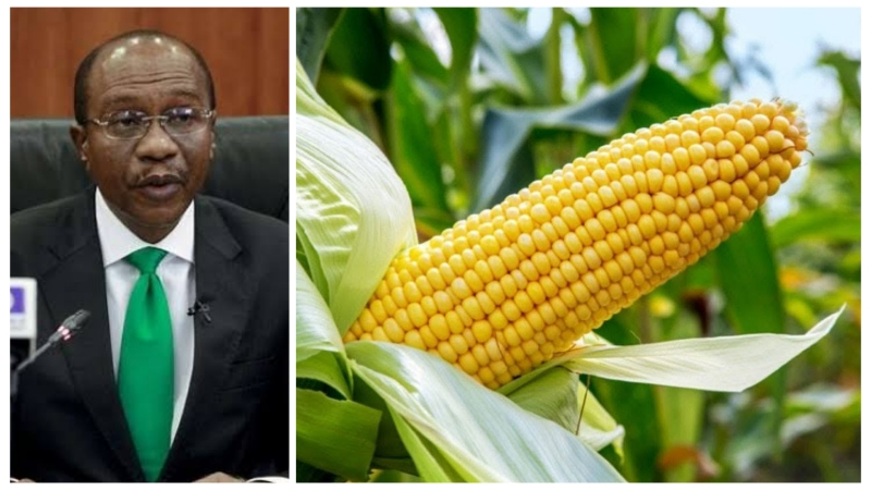, CBN moves to ban importation of maize., Effiezy - Top Nigerian News & Entertainment Website