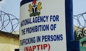 NAPTIP vows to go after traffickers of Temitope Arowolo.
