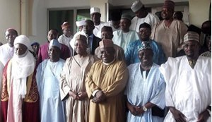 Northern elders reject Senate's move to review 1999 Constitution