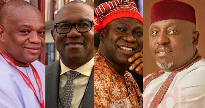 See the names of 11 politicians from South East that Igbo group says are qualified to be president of Nigeria in 2023