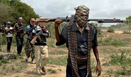 Bandits storm Niger village, kidnap foreign national
