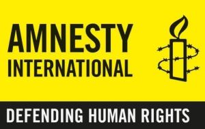SERAP warns Nigerian govt to stop harassment, intimidation against Amnesty Int'l