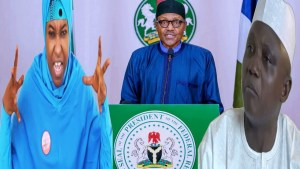 , You can't bring down something that is down, Buhari already brought his Govt down, Aisha Yesufu replies Garba Shehu, Effiezy - Top Nigerian News & Entertainment Website