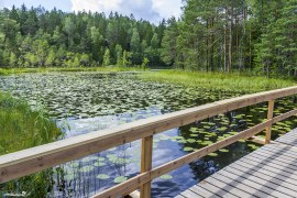 First lake of the Nuuksio National Park