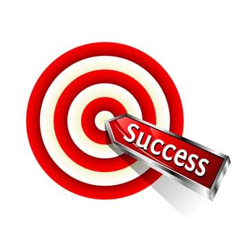 target market, micro targeting for success
