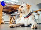 Pet Insurance Malaysia Johor Batu Pahat Agensi Pekerjaan Unilink Prospects SB Wisma V Cat Insurance Malaysia Dog Insurance Malaysia Johor Batu Pahat Your pet is part of your family Insure your pet today A07