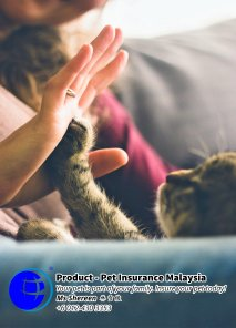 Pet Insurance Malaysia Johor Batu Pahat Agensi Pekerjaan Unilink Prospects SB Wisma V Cat Insurance Malaysia Dog Insurance Malaysia Johor Batu Pahat Your pet is part of your family Insure your pet today A08