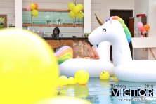 Victor Lim Birthday 2018 in Malaysia Party Buffet Swimming Fun A05