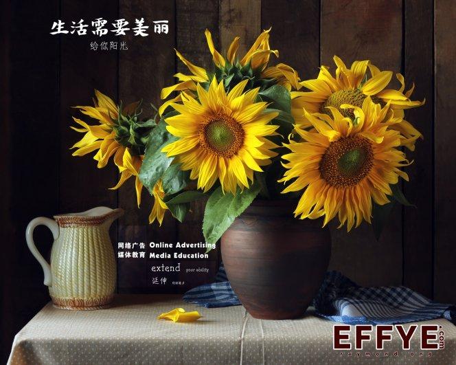 Effye Media 峇株吧辖开办教育 峇株巴辖电脑班集体班或个人班 王家豪授课 Raymond Ong A00-07