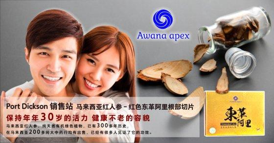 Port Dickson 销售站 马来西亚红人参 红色东革阿里根部切片 Awana Apex 在马来西亚200多间大中药行均有出售 A01
