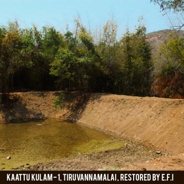 Kaattu Kulam 1_5