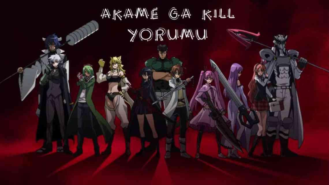 Akame ga Kill – Anime Yorumu