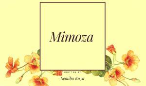 mimoza-semiha-kaya-efsunlublog