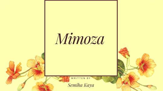 Mimoza – 2. Bölüm