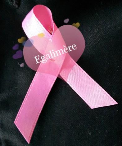 Octobre rose - La vie en rose - Egalimère - paye ta précarité