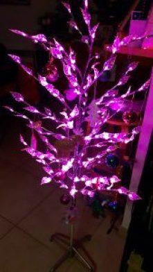 Magie de Noël - Le Pas-sapin d'Egalimère