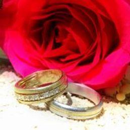 Rose et alliance - Nana Cam Photo - Parlez moi d'amour
