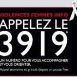 comprendre les violences faites aux femmes - 3919