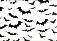 bat_background