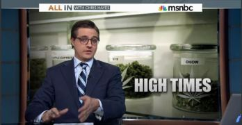 Chris Hayes marijuana weed pot