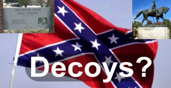 confederate flag racism decoy